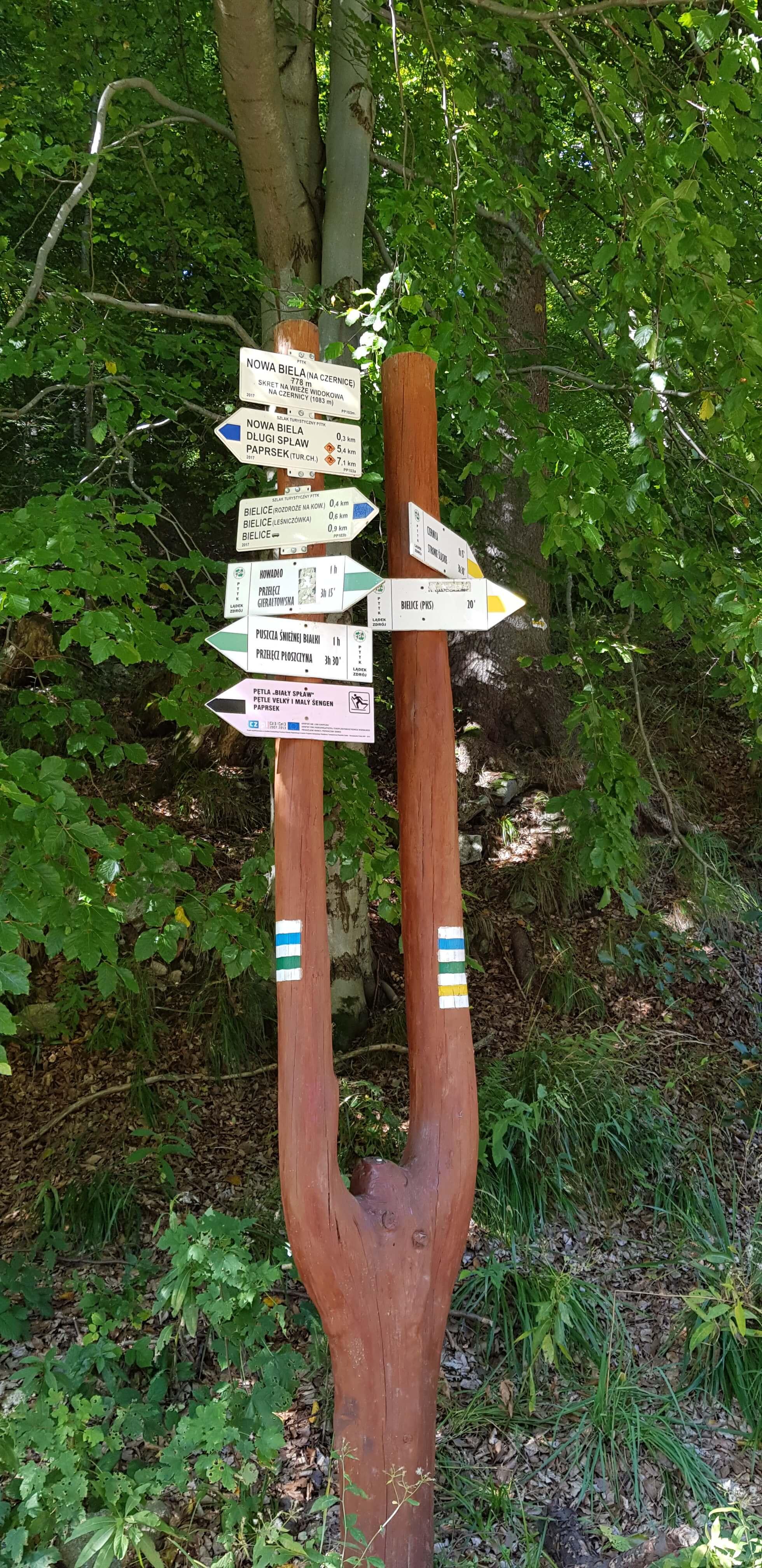 Góry Złote czy Bialskie? - zdobywamy szczyty Rudawiec i Kowadło
