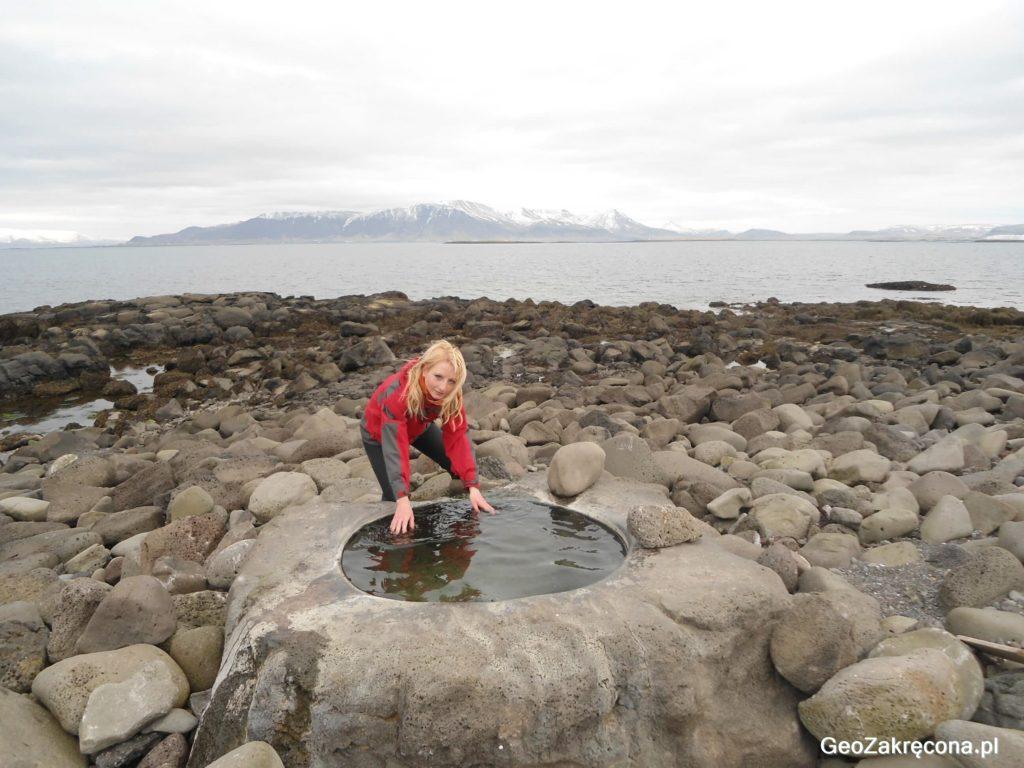 Reykjavik - spacer po zielonej stolicy