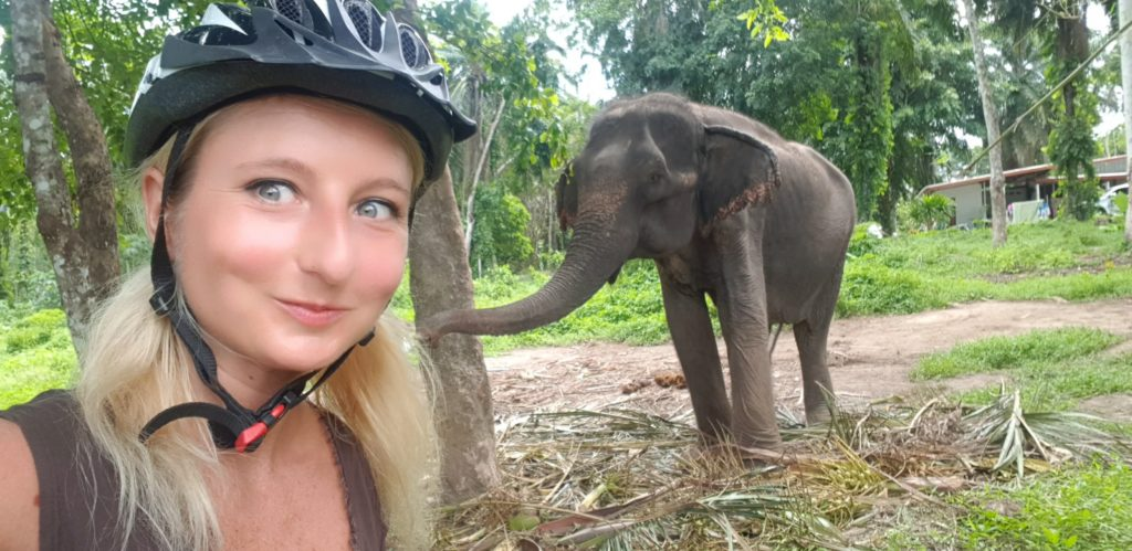 Zwierzęta w Tajlandii
