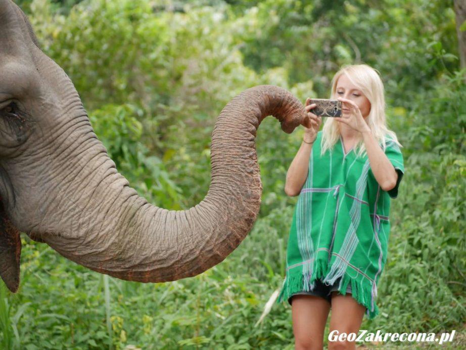 Sanktuarium słoni